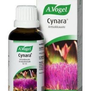 A.Vogel Cynara