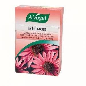 A.Vogel Echinacea Kurkkupastilli
