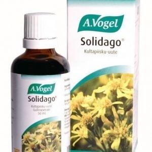 A.Vogel Solidago kultapiisku-uute