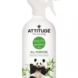 Attitude Yleissuihke