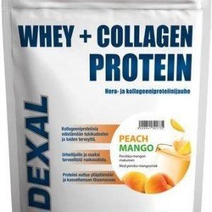 Dexal Whey+Collagen Proteiinijauhe Persikka-Mango