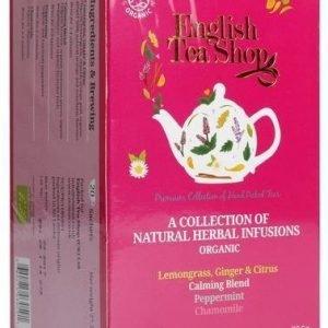 English Tea Shop Luomu Haudukelajitelma