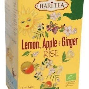 Hari Tea Luomu Rise Tee