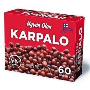 Hyvän Olon Karpalo