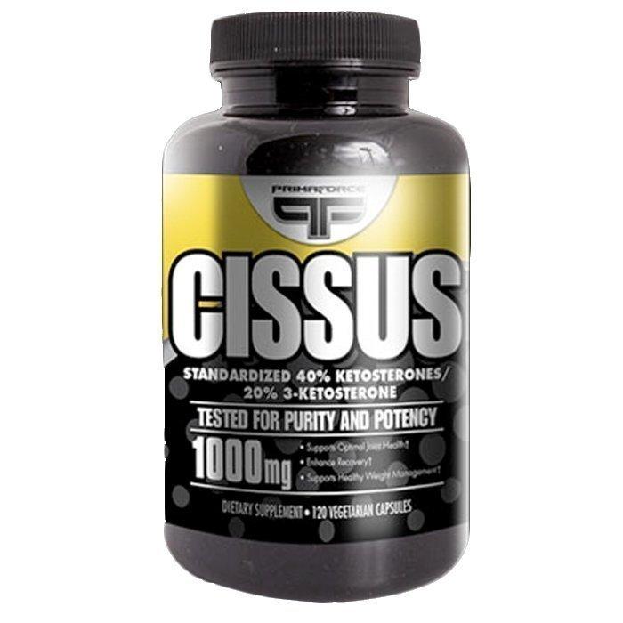 Primaforce Cissus 120 kapselia