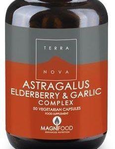 Terranova Astragalus