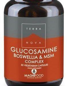 Terranova Glukosamiini