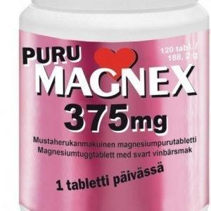 Vitabalans Puru Magnex 375 mg