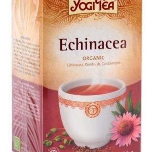 Yogitea Luomu Echinacea Tee